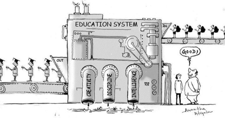 grey education